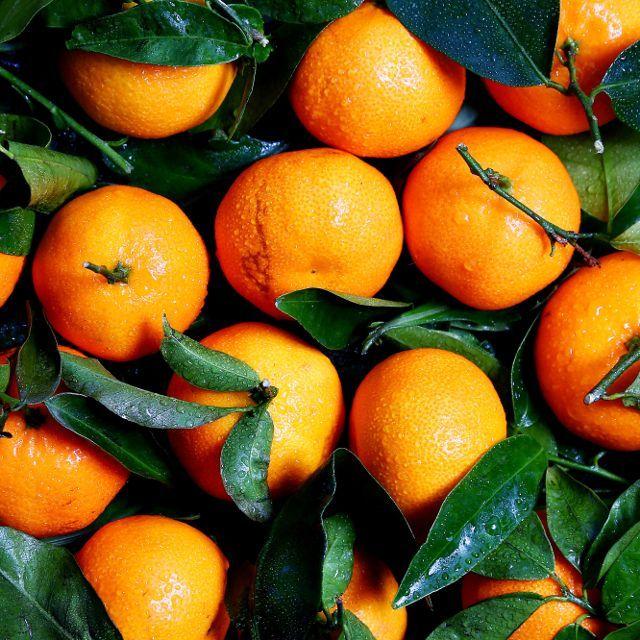 апельсины против рака